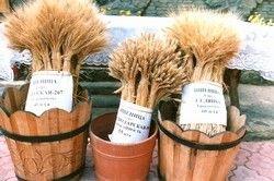Пшеницу и ячмень обложили пошлинами