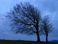 5 способов не впасть в депрессию осенью и зимой