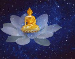 В Индии открылся маршрут по местам Будды