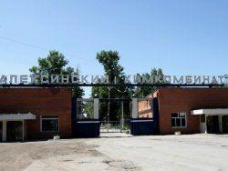 Сын Рогозина возглавил пороховой комбинат