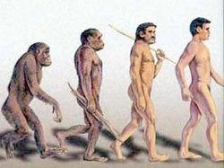Древняя засуха в Африке сыграла важную роль в эволюции человека