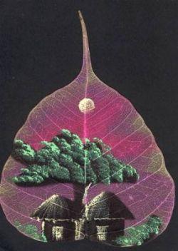 Креативные рисунки на листьях березы (фото)