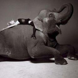 Фотограф Мишель Комт представил свои самые известные работы (фото)