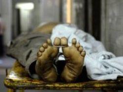 Кубань: очевидец заснял разгрузку трупов из фуры