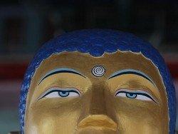 Осквернившего статую Будды борца задержали по новому делу