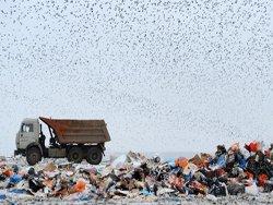 Куда девать кавказский мусор?