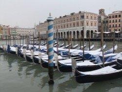 В программу Венецианского кинофестиваля вошли 55 фильмов