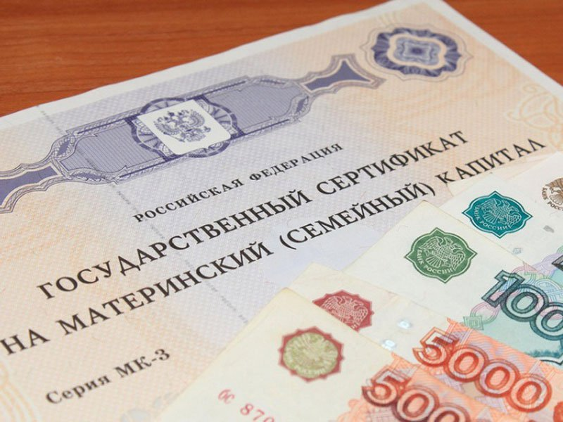 Маткапитал могут заменить ежемесячным пособием