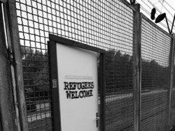 Девятерых беженцев из Ирака заподозрили в изнасиловании немки