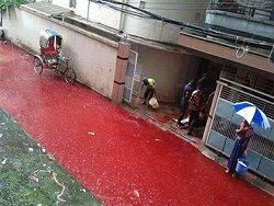 Столицу Бангладеш наводнили реки с кровью убитых в Курбан-байрам животных