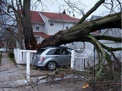 """ООН: Ураган """"Мэтью"""" оставил без крова более 15 тысяч человек"""