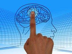 Ученым запретили оживлять мертвый мозг