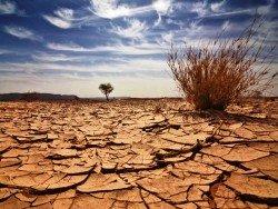 Ученые назвали новую причину исчезновения жизни на Земле