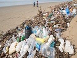 Биоразлагаемый пластик -