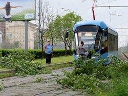 Ураган унес жизни 11 человек в Москве