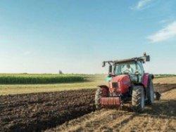 Число сельских хозяйств в России сократилось на 40%