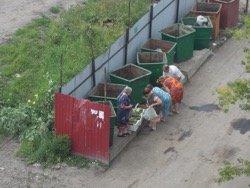 Тюменские пенсионеры копаются в помойках в поисках еды