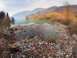 """В Тюмени члены """"Молодой гвардии"""" ради пиара завалили озеро мусором, а потом его убрали"""