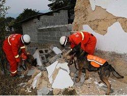 Жертвами разрушительного землетрясения в Китае могли стать сотни человек
