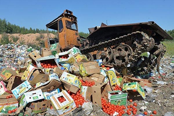 Минсельхоз предлагает расширить практику уничтожения еды