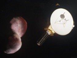 NASA планирует дополнительную пролетную цель для New Horizons
