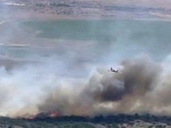 Число жертв лесных пожаров в Калифорнии увеличилось до 10