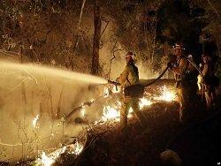 Жертвами пожаров в Калифорнии стали, как минимум, 40 человек