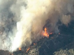 Лесные пожары в Калифорнии: один человек погиб, двое ранены