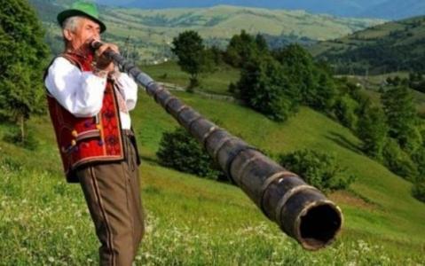 Венгрия всерьез нацелилась на Закарпатье