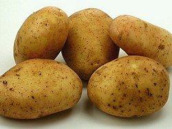 Россиянам стоит запастись картошкой: ходовой овощ скоро подорожает