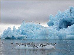 Большие деньги Якутии для экологических проектов Арктики