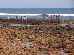 Побережье Индии катастрофически обмелело — океан отступил от него на 100 метров