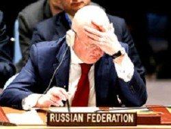 Совбез отклонил резолюцию РФ с осуждением удара по Сирии