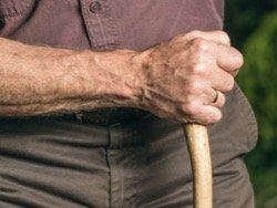 Ученые создали программу для избавления от инвалидности в пожилом возрасте