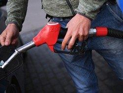 В спор о ценах на бензин захотели привлечь Путина