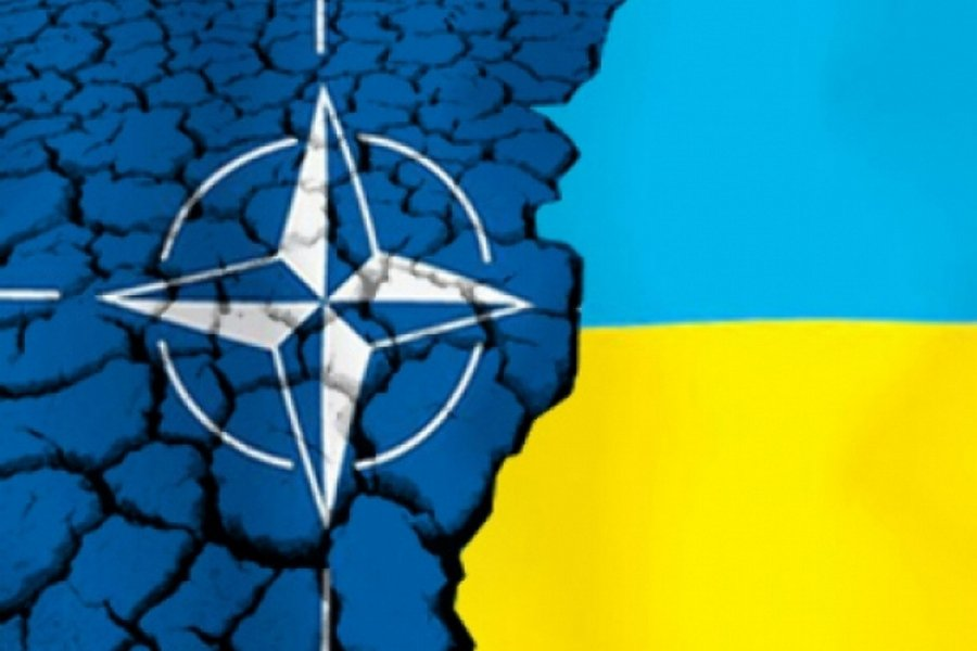 Неожиданное признание: при вступлении в НАТО от Украины останется половина!
