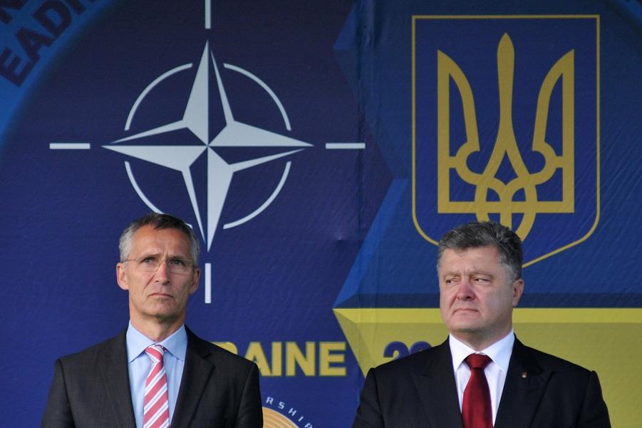 """""""НАТО вряд ли оседлает белого коня для спасения Украины"""" : Мозаика Newsland – комментарии, дискуссии и обсуждения новости."""