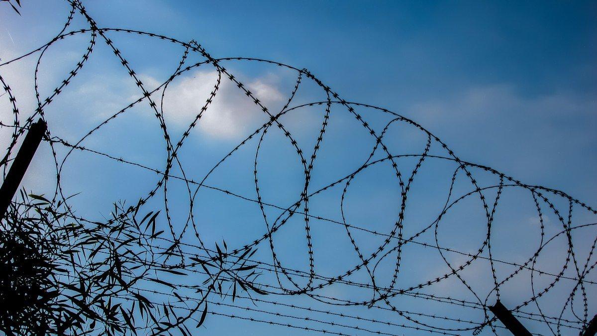 Досрочно выпустит на свободу 14 000 преступников. Среди них много знаменитостей : Общество Newsland – комментарии, дискуссии и обсуждения новости.