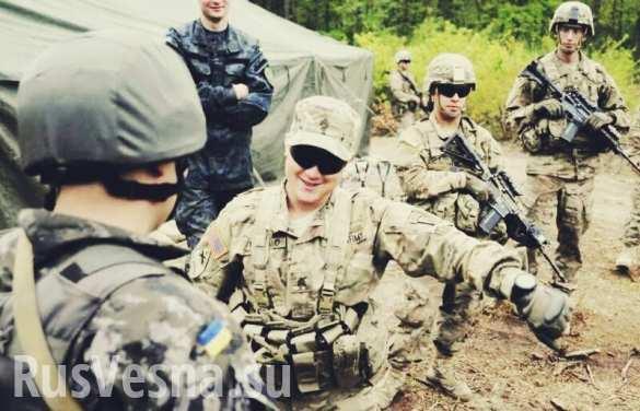 США и Канада тренируют украинских террористов : Политика Newsland – комментарии, дискуссии и обсуждения новости.