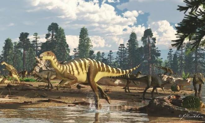 В Австралии открыли новый вид динозавров