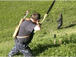 Госдума разрешила россиянам охотится с луком и стрелами
