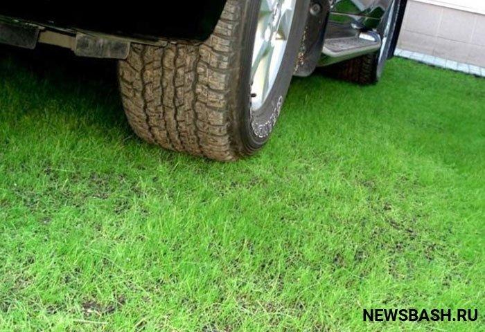 В Башкирии начал действовать закон о штрафах за парковку на газонах