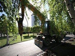 В России растет число городов, где протестуют против застройки парков