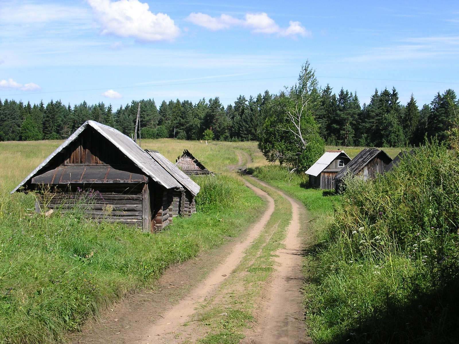Как правительство собирается поднимать село