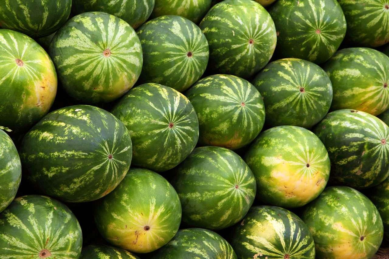 Россельхознадзор не пропустил 20 тонн казахстанских арбузов