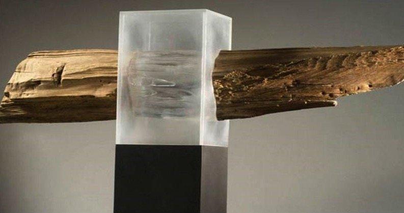 Ученые представили миру прозрачную древесину