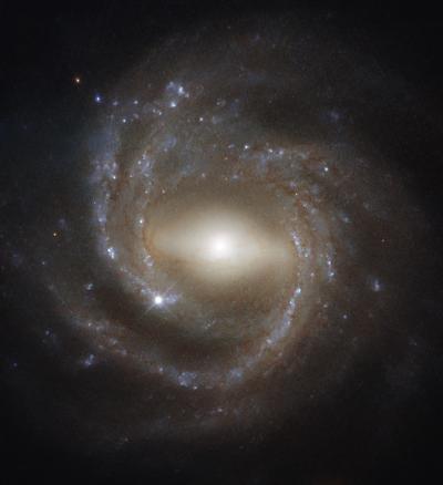«Хаббл» сфотографировал спиральную галактику с перемычкой NGC 7773