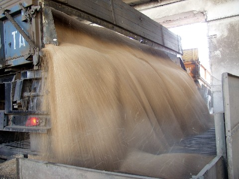 В российском госфонде выявлена недостача почти на 16 тыс. тонн зерна