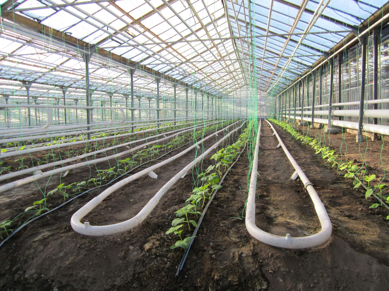 Инвестиции в сельхозразвитие