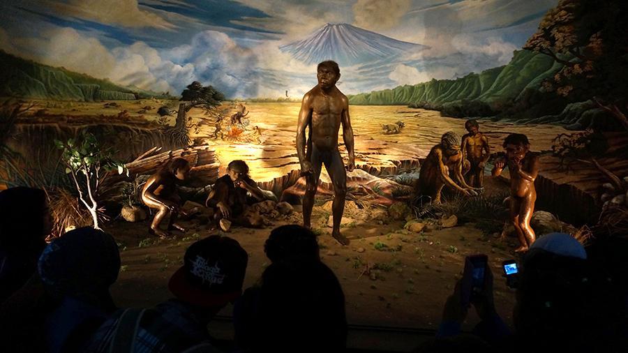 В Индонезии нашли останки древнего человека возрастом 1,8 млн лет